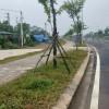 Bán đất Tân Xã, Thạch Thất Hà Nội diện tích 255m2, 100% thổ cư chỉ với 7tr5/m2 l/h: 0388388586